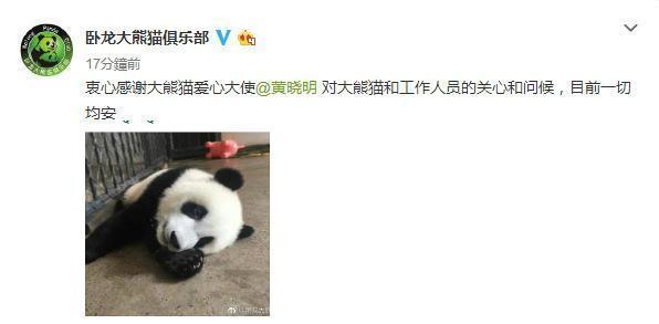 秋瓷炫于晓光机场高甜虐狗,可黄晓明AB的小举动赢过了她