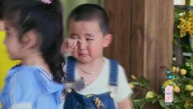 比起亚洲舞王,我更想抱走这个胖萌娃和小奶狗