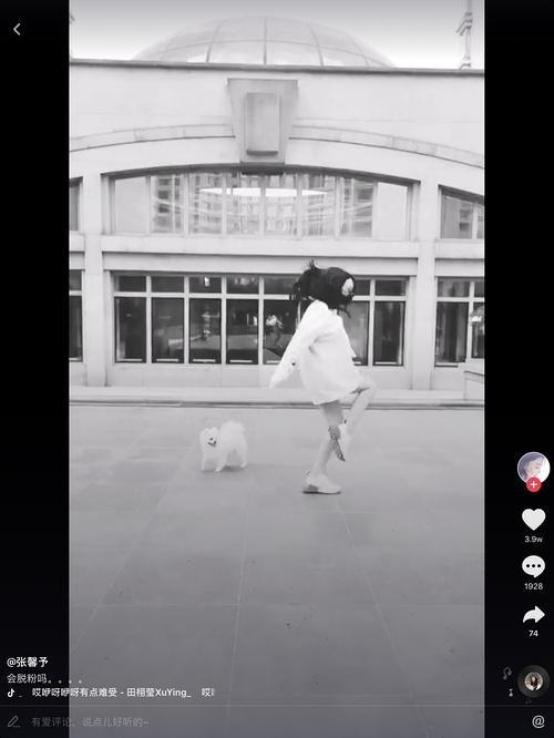 张馨予在大街上与狗狗尬舞超开心 而范冰冰却深陷舆论漩涡