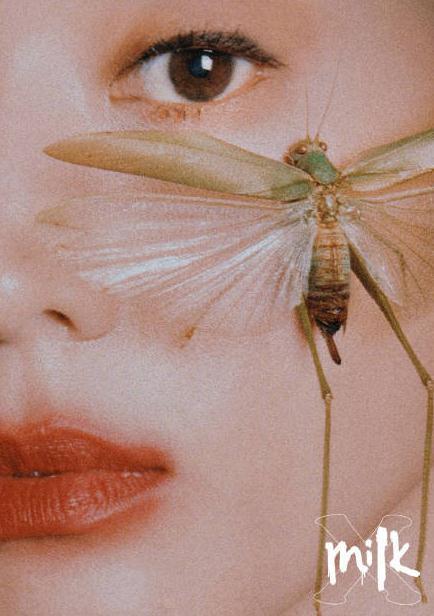 张钧甯拍写真太拼,竟然把虫子放到脸上,眉毛都要吓飞了