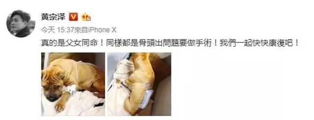已复工!TVB一线男神手术后首度亮相 大谈意外受伤经过