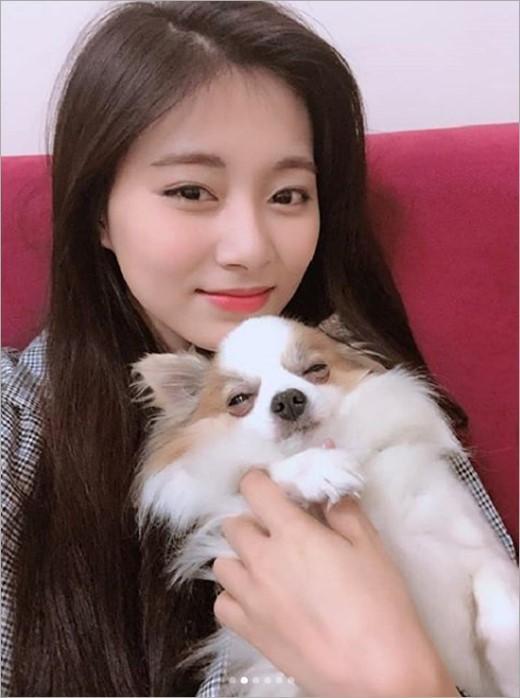 韩国女团TWICE成员周子瑜SNS发与宠物犬合影