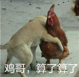 肖战王一博这样的小学鸡,再给我多来几只
