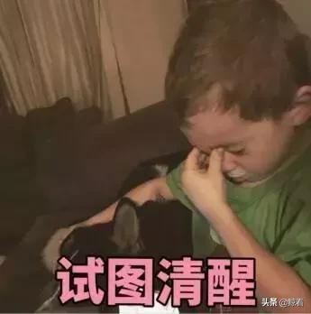 赵丽颖产后第一照曝光!炒绯闻、叒怀子…这个孕怀的可真是故事多
