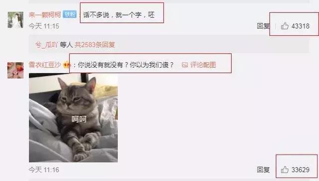 比当年的赵丽颖还要惨?又一女星遭网络暴力,观众请她滚出娱乐圈