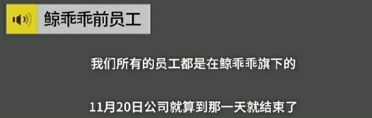 鄭爽張恒分手?公司一個月前停運,員工稱鄭爽可能承受經濟損失