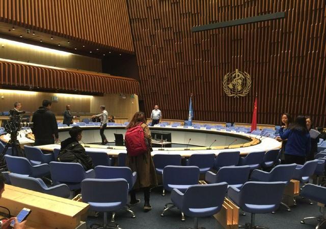 """以前""""毯星"""",现在""""讲星"""",去联合国发言成为新镀金方式?"""