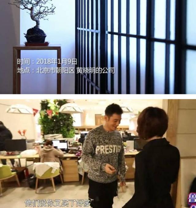明星工作室长啥样?刘雯是艺术展览区,刘涛为什么有那么多马