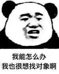 若说万年修得黄磊,那么亿年才能修得霍启刚