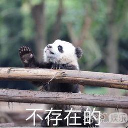气哭蒋勤勤的陈建斌,是不是国产老公的典型?